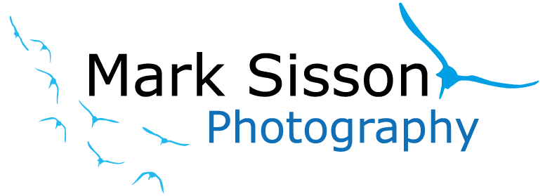 Mark-Sisson-Logo-Pos